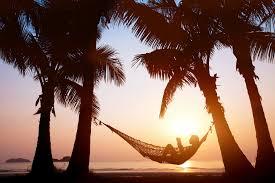 palm tree location